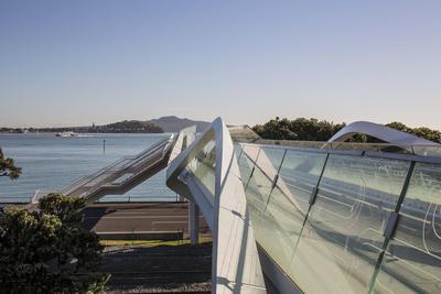 Point Resolution / Taurarua Footbridge
